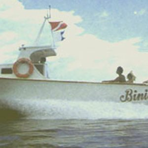 Power Boats Archives - Hartley Boat Plans