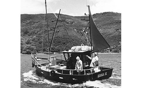 Seaharvester 34 - Study Pack - Hartley Boat Plans